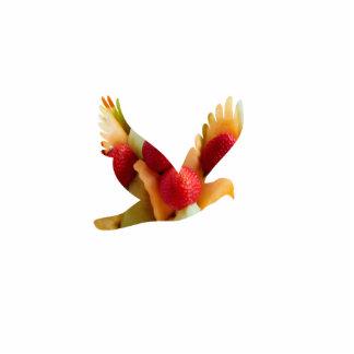 fruit bird,magnet statuette