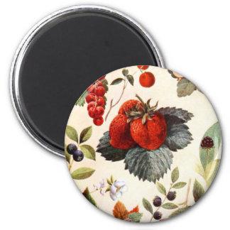 Fruit Botanical Magnet