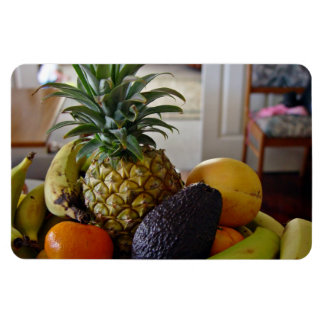 Fruit bowl with avocado foremost rectangle magnet