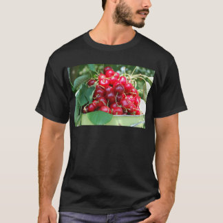 Fruit Cherries Sweet Dessert Destiny Gifts T-Shirt