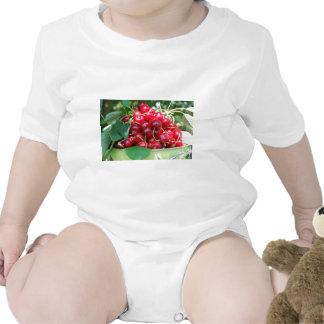 Fruit Cherries Sweet Dessert Destiny Gifts Shirt