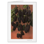 Fruit Chromo Lithograph of Mammoth Greeting Cards
