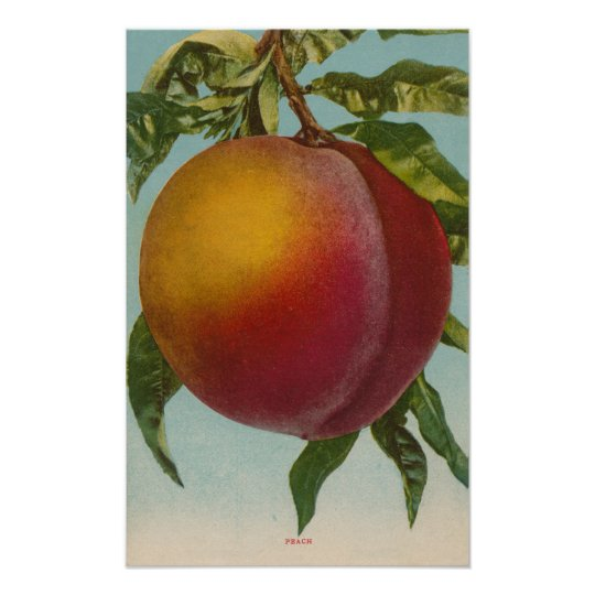 Fruit Chromo Lithograph of PeachFruitState Poster
