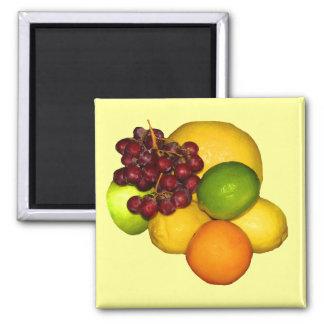 Fruit Design Refrigerator Magnet