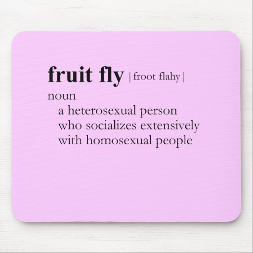 FRUIT FLY (definition) Mouse Pad