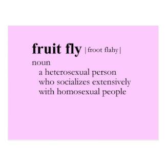 FRUIT FLY (definition) Postcard