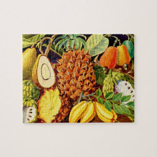 Fruit Illustration 1937 - Puzzel w/ Gift Box 1 Jigsaw Puzzle