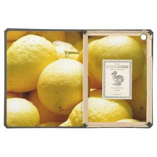 Fruit Lemons iPad Air Cases
