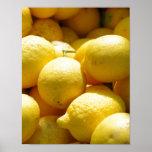 Fruit: Lemons Print