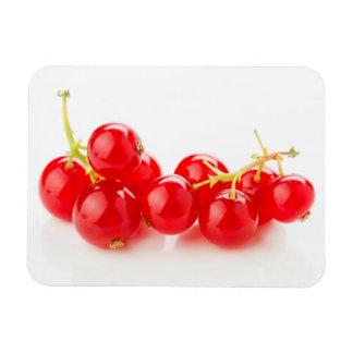 Fruit luminous red color magnet