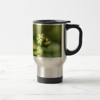 Fruit of a common rue (Ruta graveolens) Travel Mug