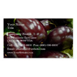 Fruit of eggplants business card template
