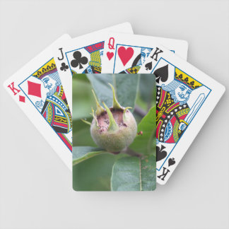 Fruit of the common medlar bicycle playing cards