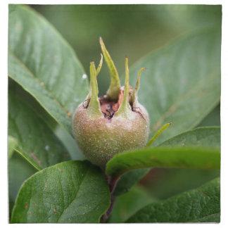 Fruit of the common medlar cloth napkin