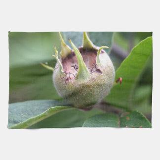Fruit of the common medlar kitchen towel