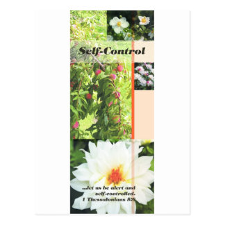 Fruit of the Spirit self control Postcard