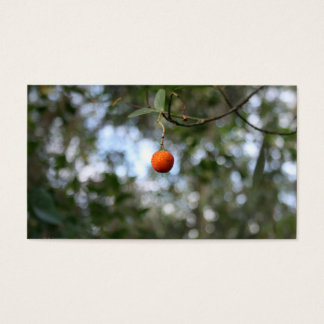 Fruit of the tree of madroño in the mountain range business card