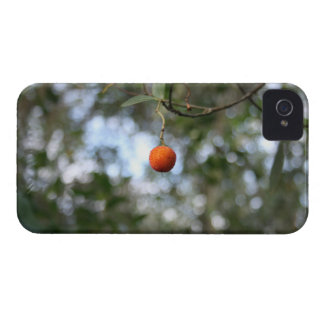 Fruit of the tree of madroño in the mountain range Case-Mate iPhone 4 case