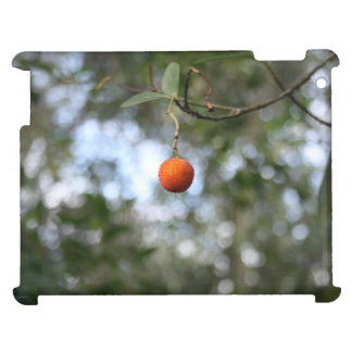 Fruit of the tree of madroño in the mountain range cover for the iPad