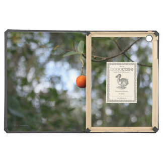 Fruit of the tree of madroño in the mountain range iPad air covers
