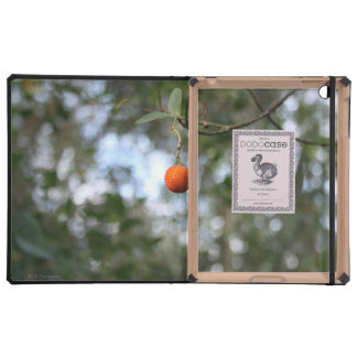 Fruit of the tree of madroño in the mountain range iPad covers
