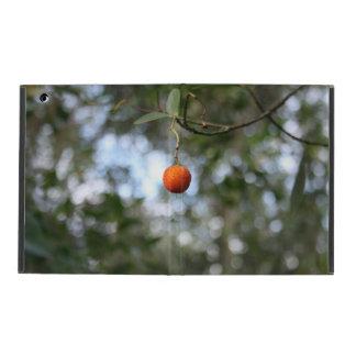 Fruit of the tree of madroño in the mountain range iPad folio case