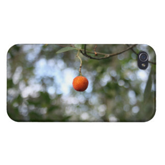 Fruit of the tree of madroño in the mountain range iPhone 4/4S case