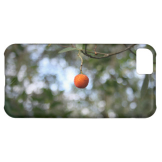 Fruit of the tree of madroño in the mountain range iPhone 5C case
