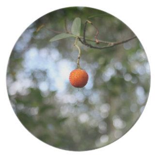 Fruit of the tree of madroño in the mountain range melamine plate
