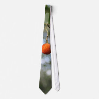 Fruit of the tree of madroño in the mountain range neck tie