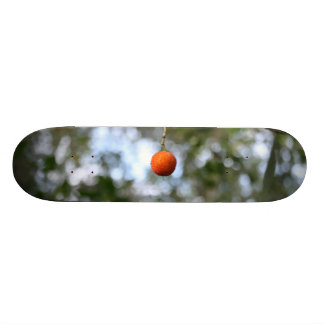 Fruit of the tree of madroño in the mountain range skateboard deck