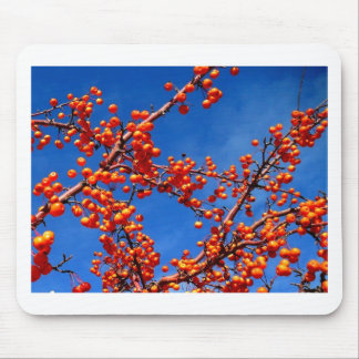 Fruit on the branch mouse pad