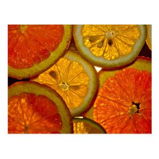Fruit Roundup Postcard