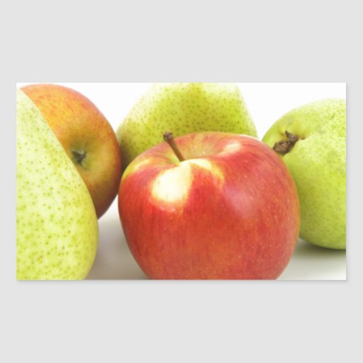 Fruit Salad Food Business Occupations Professional Rectangle Stickers