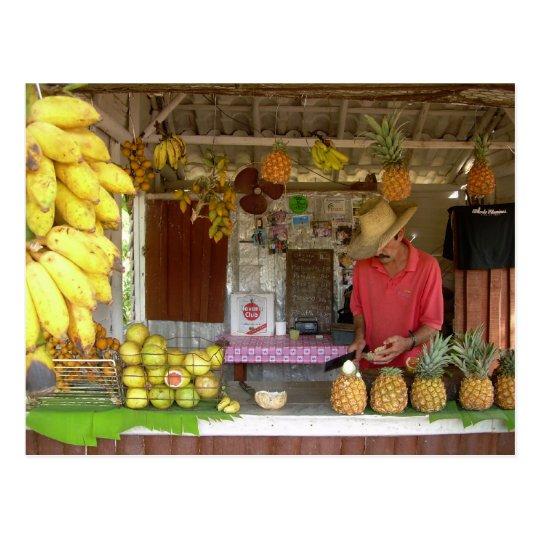 Fruit Stall Postcard
