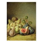 Fruit Still Life Post Cards