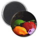 fruit-still-life refrigerator magnets