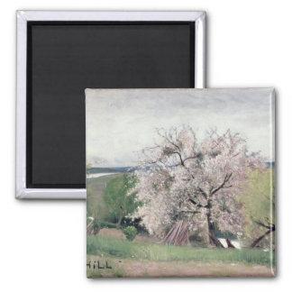 Fruit Tree in Blossom, Bois-le-Roi Magnet