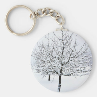 Fruit Tree In Winter Clothing Keychain