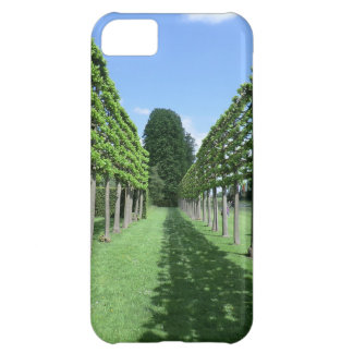 Fruit Trees at Erddig Hall Cover For iPhone 5C