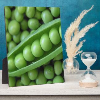 FRUIT  VEGETABLES PHOTO PLAQUES