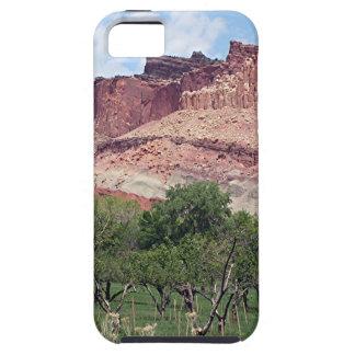Fruita, parque nacional del filón del capitolio, iPhone 5 Case-Mate fundas