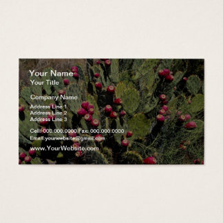Fruited prickly pear cactus, Sonoran Desert Business Card