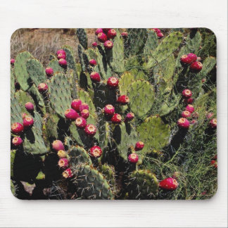Fruited prickly pear cactus, Sonoran Desert Mouse Pad