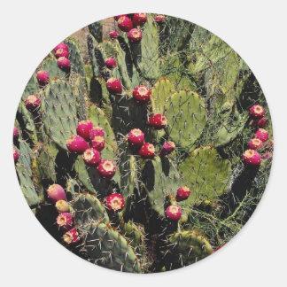 Fruited prickly pear cactus Sonoran Desert Round Stickers