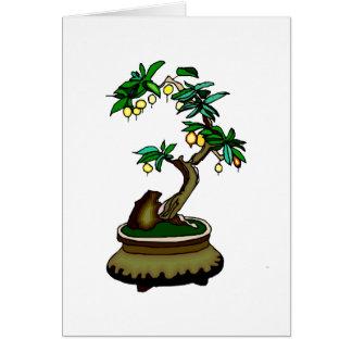 Fruiting Bonsai in Pot Bonsai Graphic Image Card