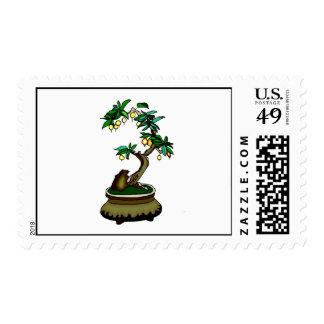 Fruiting Bonsai in Pot Bonsai Graphic Image Postage Stamp
