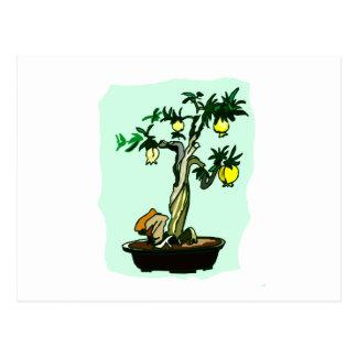 Fruiting Bonsai Yellow Fruit Graphic Image Design Postcard