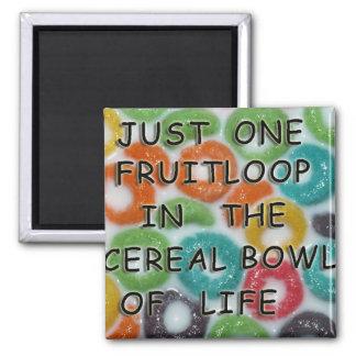 Fruitloop Magnet