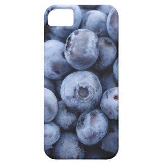 Fruits Blueberries snack fruit berries berry iPhone SE/5/5s Case